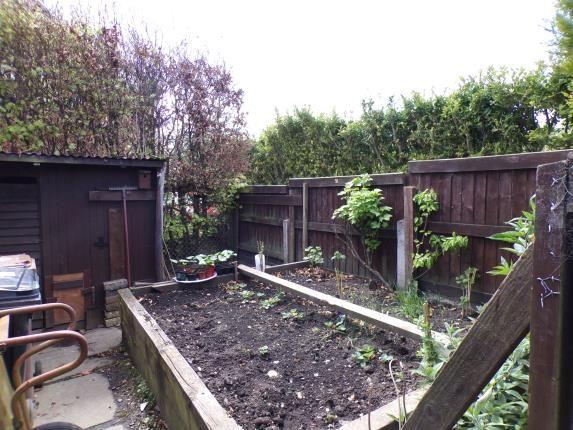 Vegetable Garden of Cae Rhug Lane, Gwernaffield, Mold, Flintshire CH7