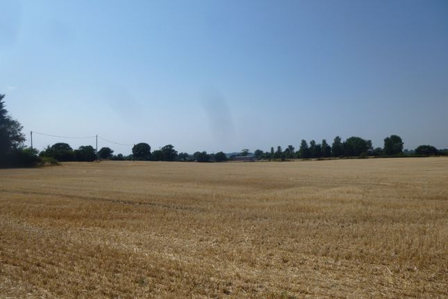 Thumbnail Farm for sale in Beccles Road, Carlton Colville, Lowestoft