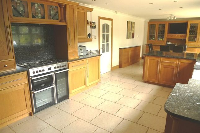 Thumbnail Detached house for sale in Voltigeur Drive, Hart, Hartlepool