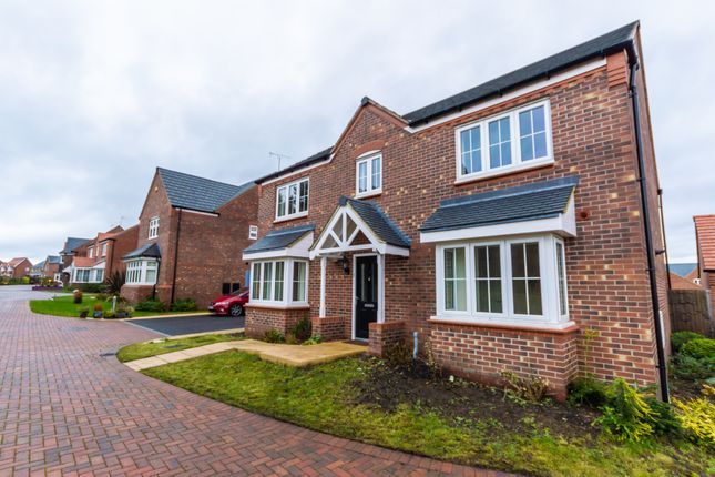 Thumbnail Detached house to rent in Falling Sands Close, Kidderminster