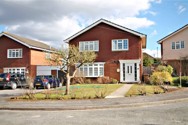 Thumbnail Detached house to rent in Fir Tree Close, Epsom
