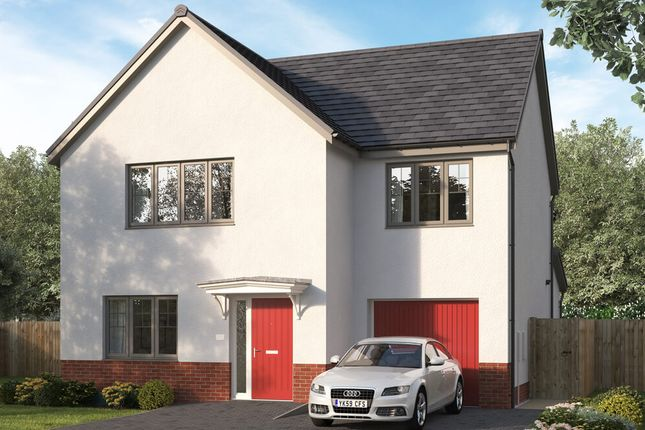 """4 bed detached house for sale in """"The Newbrook"""" at Stirling Road, Larbert FK5"""