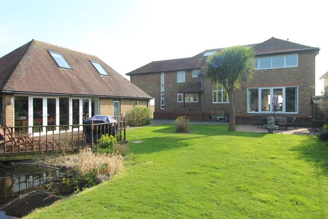 Thumbnail Detached house to rent in Marine Drive West, Barton-On-Sea, New Milton, Hampshire