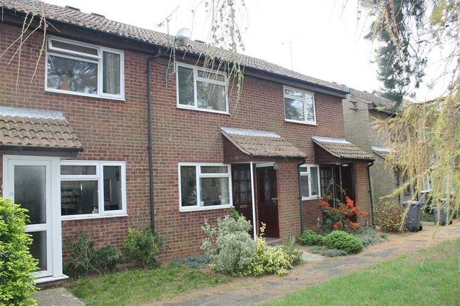 Thumbnail Terraced house to rent in Lachlan Green, Woodbridge