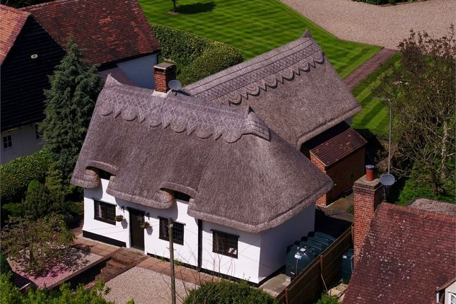 Thumbnail Detached house for sale in Braintree Road, Stebbing, Great Dunmow, Essex