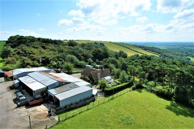 Thumbnail Detached house for sale in Roman Road, Bleadon Hill, North Somerset