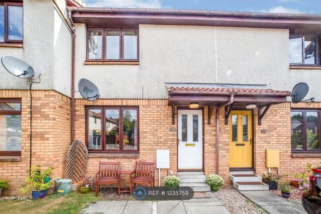 Thumbnail Terraced house to rent in Waverley Crescent, Livingston