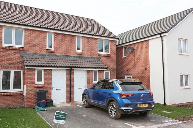 Thumbnail Semi-detached house to rent in Sweet Chestnut, Cranbrook, Exeter