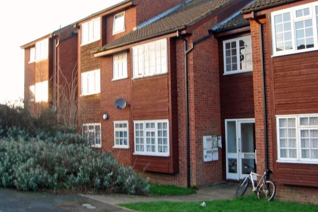 Thumbnail Property to rent in St. Peters Close, Daventry