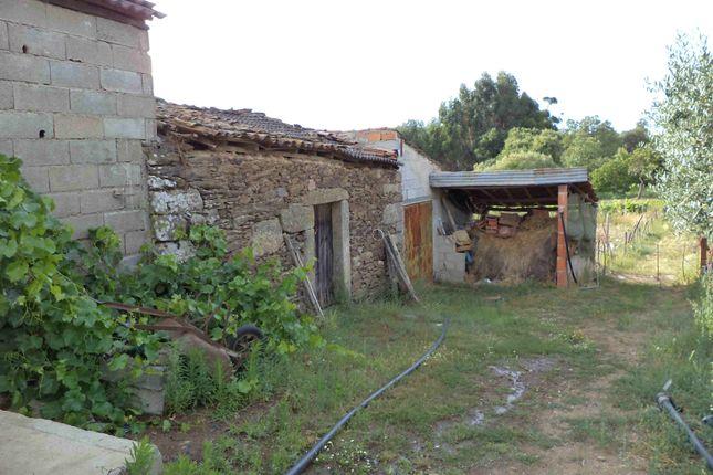 Properties for sale in Penamacor, Castelo Branco, Central