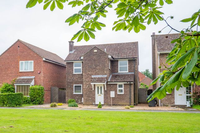 Thumbnail Detached house to rent in The Green, Leavenheath, Colchester