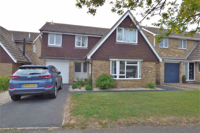 Thumbnail Detached house to rent in Ash Drive, Seaford