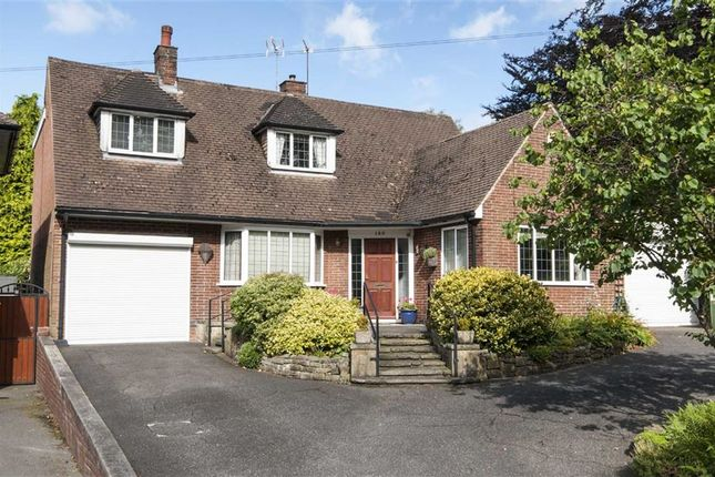 Thumbnail Detached bungalow for sale in Derby Road, Swanwick, Alfreton