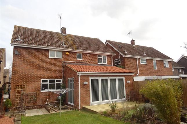 Thumbnail Property to rent in Thirlmere Close, Great Notley, Braintree