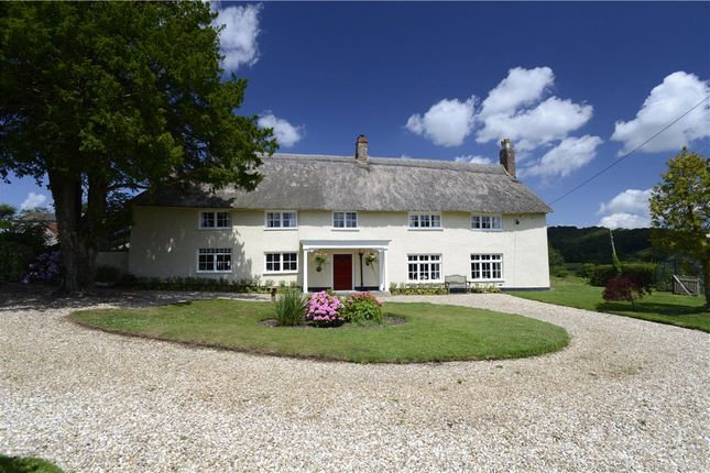 Thumbnail Detached house for sale in Combe Raleigh, Honiton, Devon