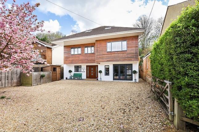 Thumbnail Detached house for sale in The Hatches, Farnham