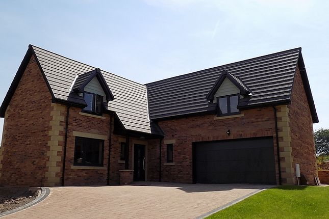 Thumbnail Detached house for sale in The Eamont, Plot 3, William's Pasture, Aglionby