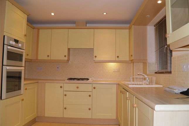 Thumbnail Terraced house to rent in Coriander Drive, Bourne, Lincolnshire