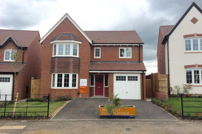 Thumbnail Detached house for sale in Royal Park, The Long Shoot, Nuneaton