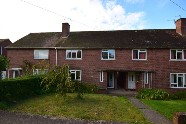 Thumbnail Terraced house to rent in Mincinglake Road, Exeter