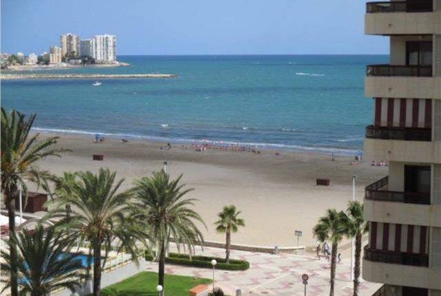 Thumbnail Apartment for sale in Calle Cullera, 03009 Alacant, Alicante, Spain