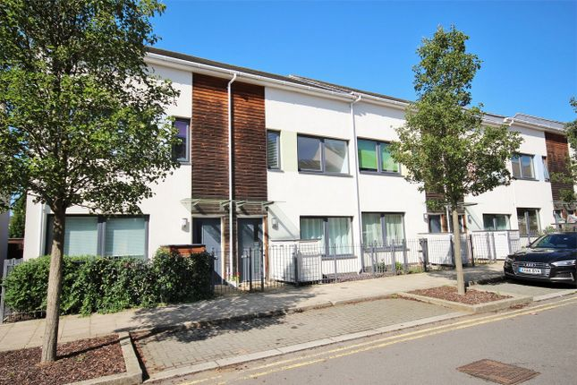 Thumbnail Terraced house for sale in Mccluskeys Street, Colchester, Essex