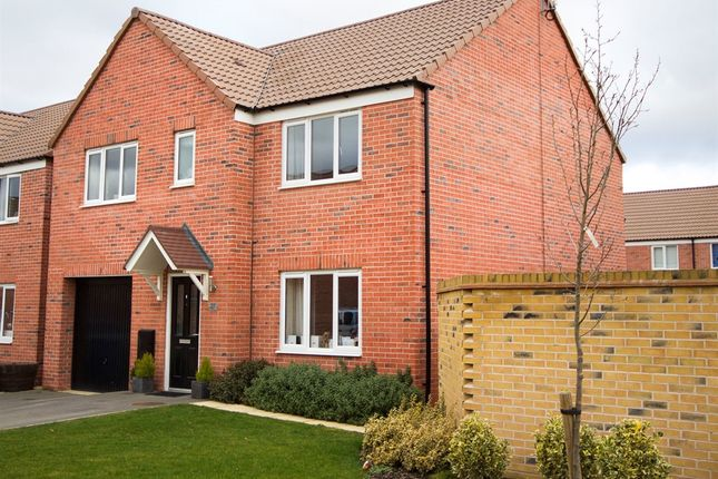"""Thumbnail Detached house for sale in """"The Winster"""" at New Works Cottages, Stoke Bardolph, Burton Joyce, Nottingham"""