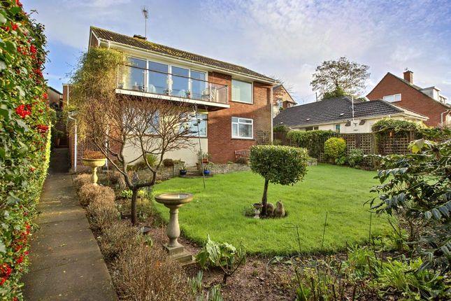 Rear Of House & Garden
