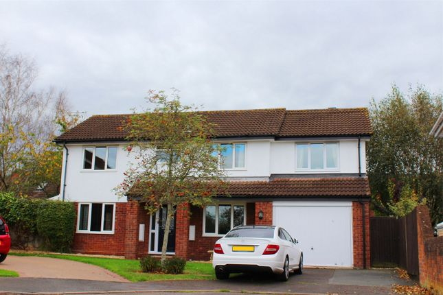 Thumbnail Detached house for sale in Sundew Close, Taunton, Somerset