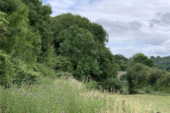 Picture No. 06 of Land At Stourpaine, Blandford, Dorset DT11