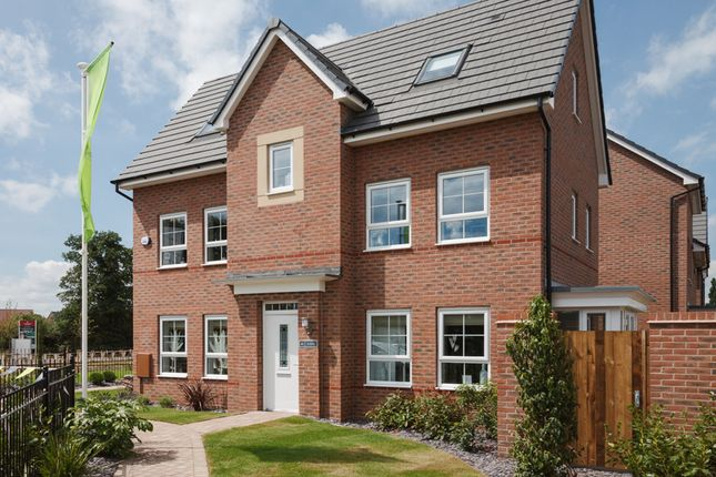 "Thumbnail Detached house for sale in ""Hexham"" at Weddington Road, Nuneaton"