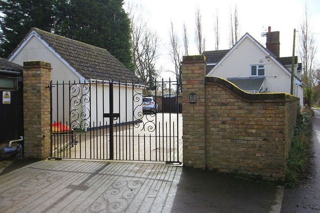 Thumbnail Detached house for sale in Domsey Lane, Little Waltham, Chelmsford, Essex