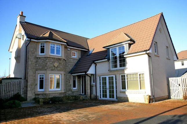 Thumbnail Detached house to rent in Castlepark Drive, Kintore