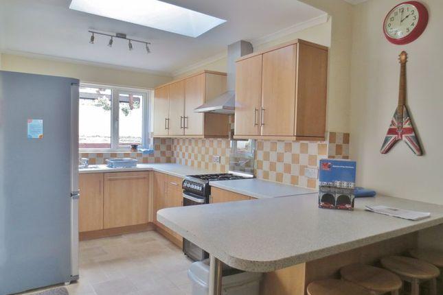 Thumbnail Terraced house to rent in Ewhurst Road, Brighton