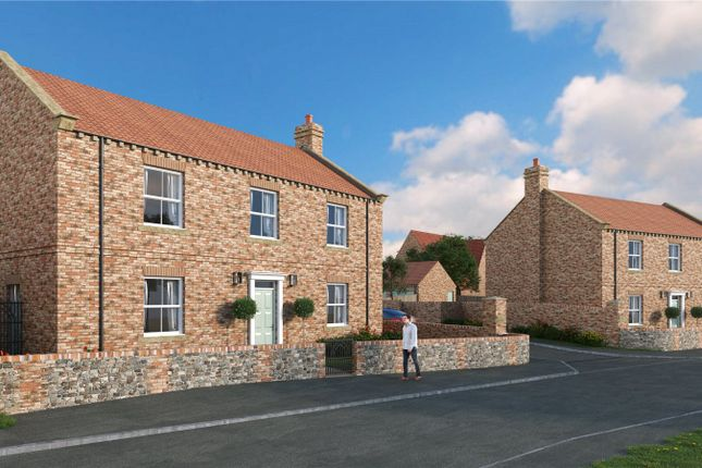 Thumbnail Detached house for sale in Back Lane, Dishforth, Thirsk