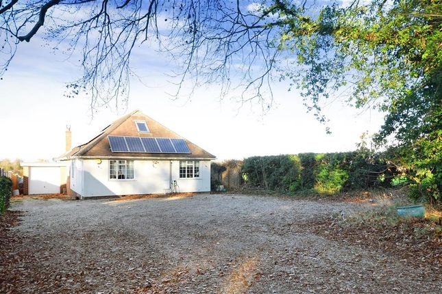 Thumbnail Bungalow for sale in Guildford Road, Effingham, Leatherhead, Surrey