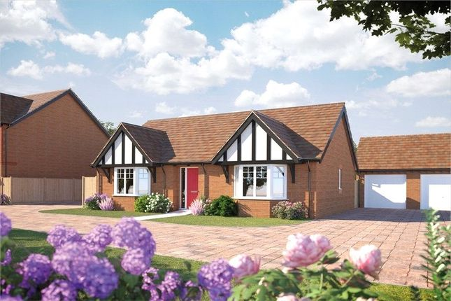 Thumbnail Bungalow for sale in Cherry Orchard, Bevere, Worcester, Worcestershire