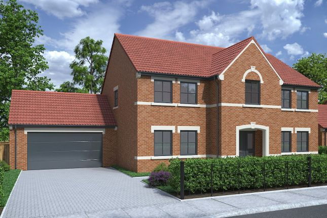Thumbnail Detached house for sale in Romangate, Middleton Lane, Middleton St George
