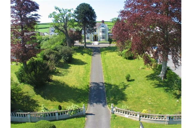Thumbnail Detached house for sale in Cardigan Road, Newcastle Emlyn