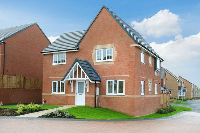 "Thumbnail Detached house for sale in ""Lincoln"" at Hampton Dene Road, Hereford"