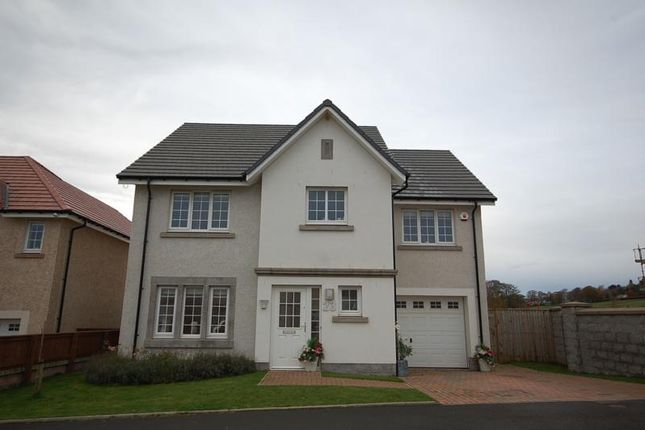 Thumbnail Detached house to rent in Friarsfield Avenue. Cults, Aberdeen