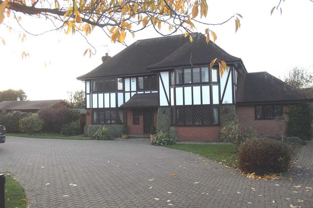 Thumbnail Detached house to rent in Tudor Lodge, Common Road, Nazeing