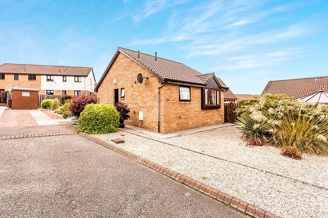 Thumbnail Bungalow for sale in Mactaggart Loan, Newtongrange, Dalkeith