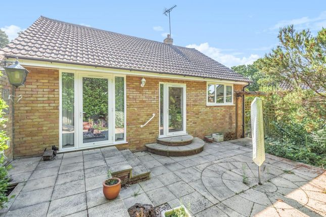 Thumbnail Bungalow for sale in Furzehill Crescent, Crowthorne