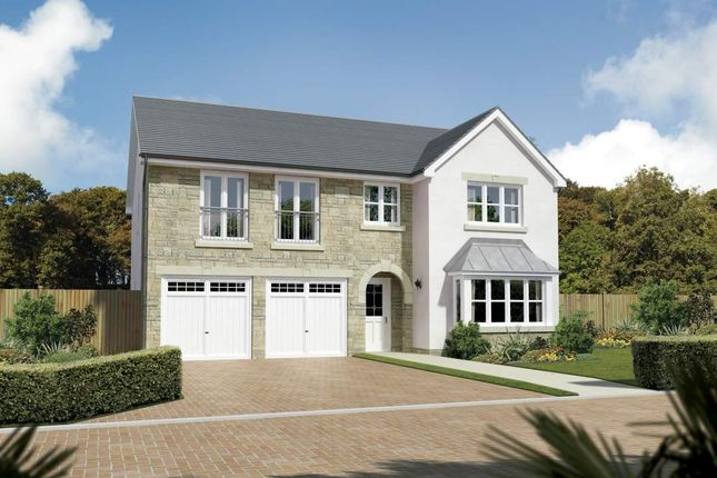 "Thumbnail Detached house for sale in ""Melton"" at Meikle Earnock Road, Hamilton"