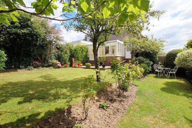 Rear Garden of Portobello Grove, Fareham PO16