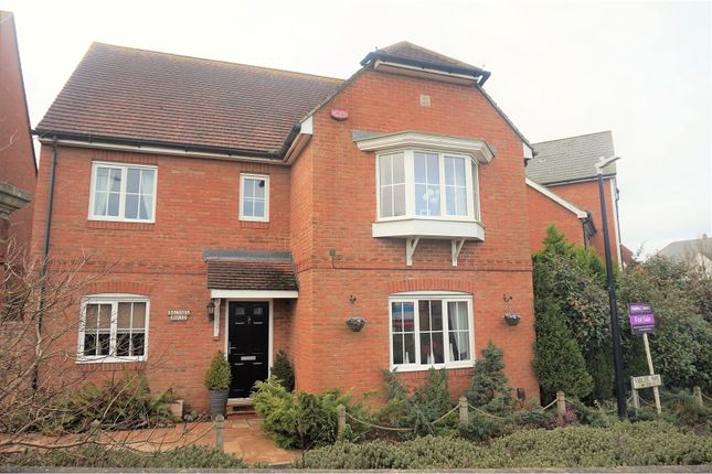 Thumbnail Detached house for sale in Violet Way, Ashford