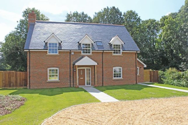 Thumbnail Detached house for sale in Old Salisbury Lane, Romsey