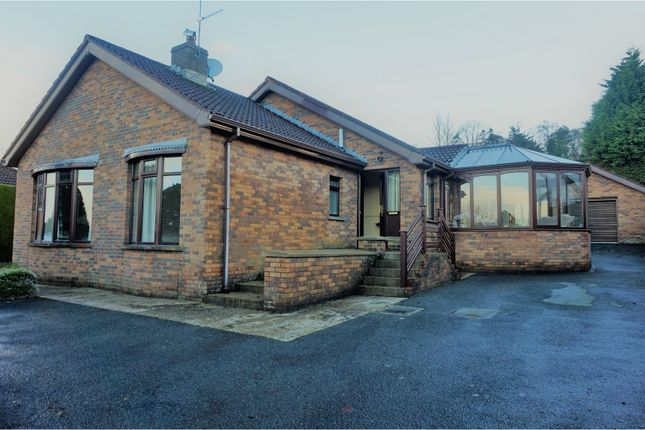 Thumbnail Detached bungalow for sale in Bayswater, Derry / Londonderry