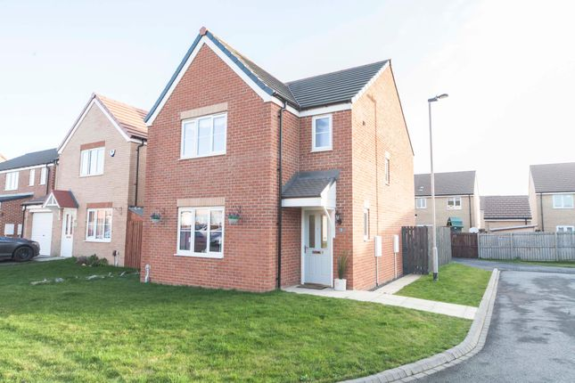 Thumbnail Detached house for sale in Saro Place, Hartlepool
